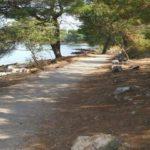 Rajska cesta