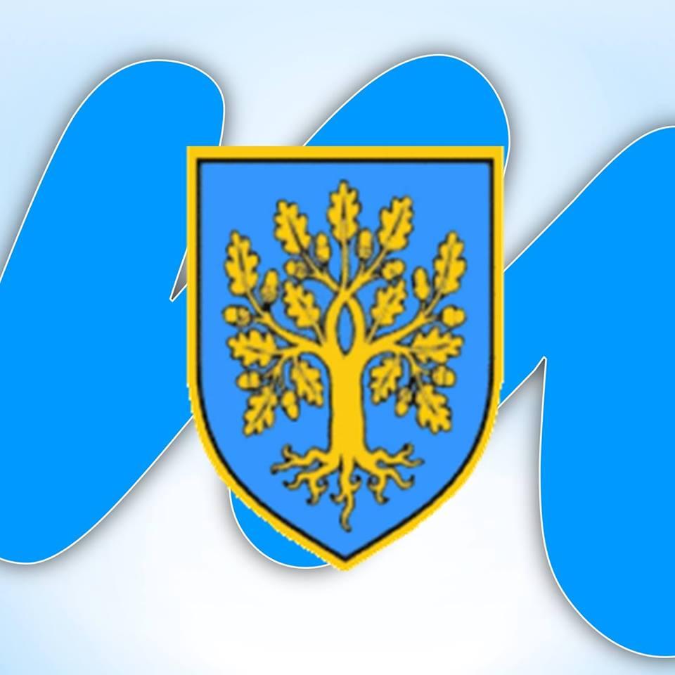 Javni poziv za podnošenje prijedloga za dodjelu javnih priznanja Općine Malinska – Dubašnica u 2017. godini