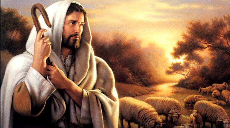 Nedjelja dobrog pastira – četvrta vazmena