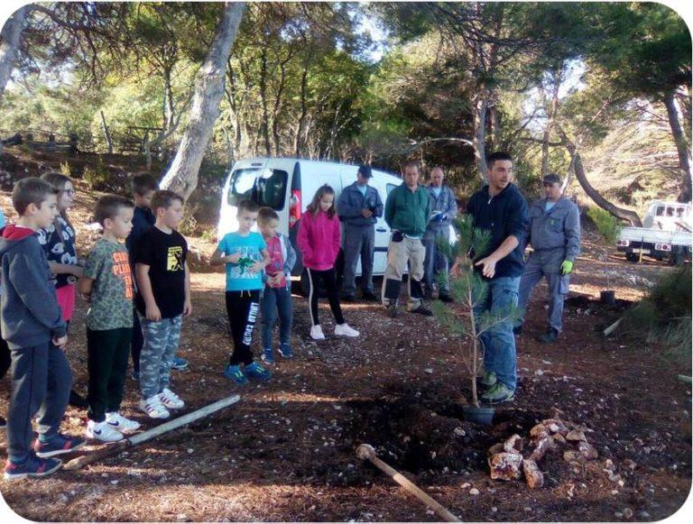 Osnovnoškolci sudjelovali u eko-akciji Zasadi drvo, ne budi panj